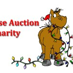 Charity auction list updated