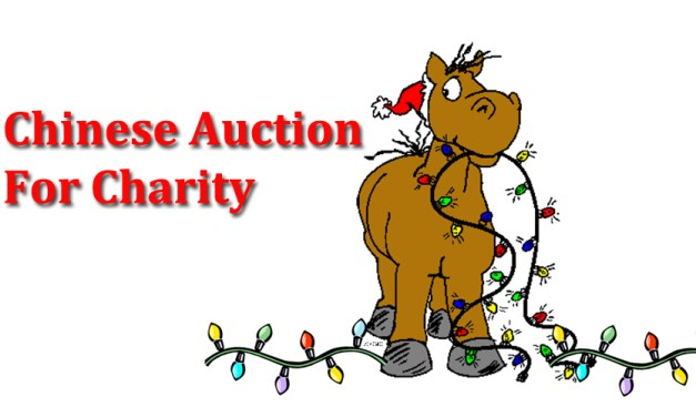 Charity Auction upcoming December 3
