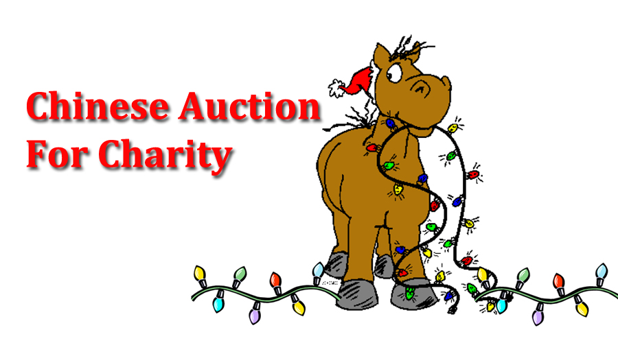 Chinese Auction for Charity sets new donation record