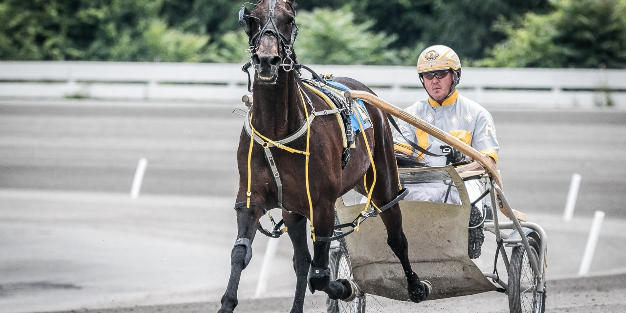 Foiled Again draws post 8 for career finale