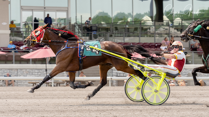 Keystone Abbey wins $70,000 Currier & Ives Filly Trot