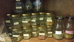 My Herb Collection