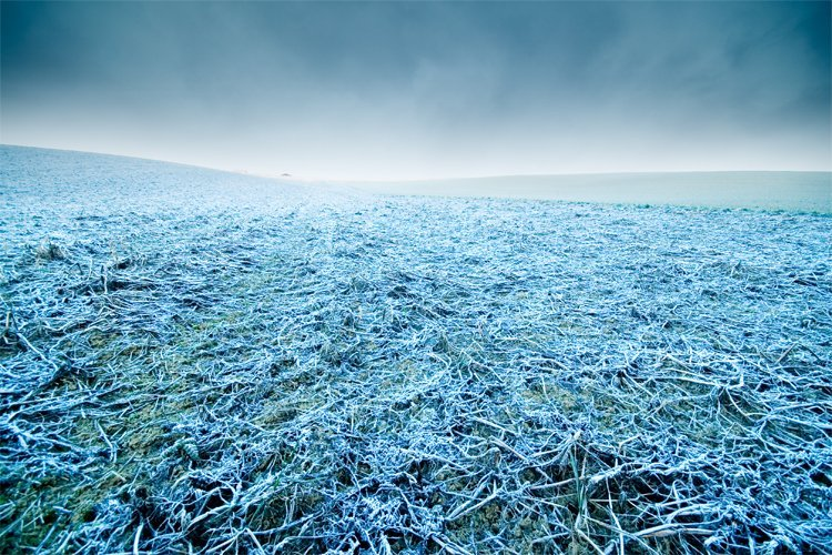 tips for Running in the winter - cold frosty morning