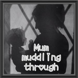 Mum Muddling Through Connect via: Facebook Twitter