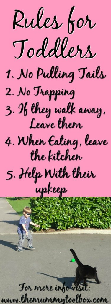 Rules for the Toddlers - Cats vs Toddlers - how we keep harmony in the house and help them form bonds