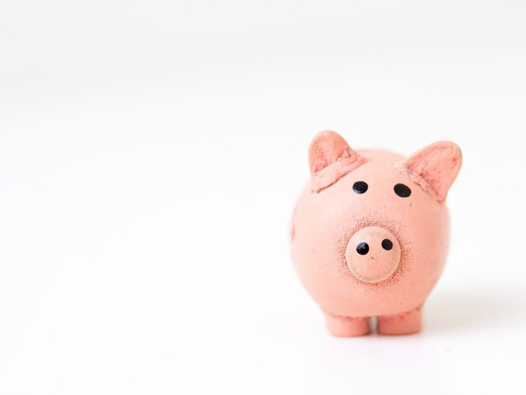 piggy bank on plain background