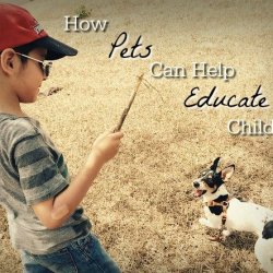 How pets can help educate children