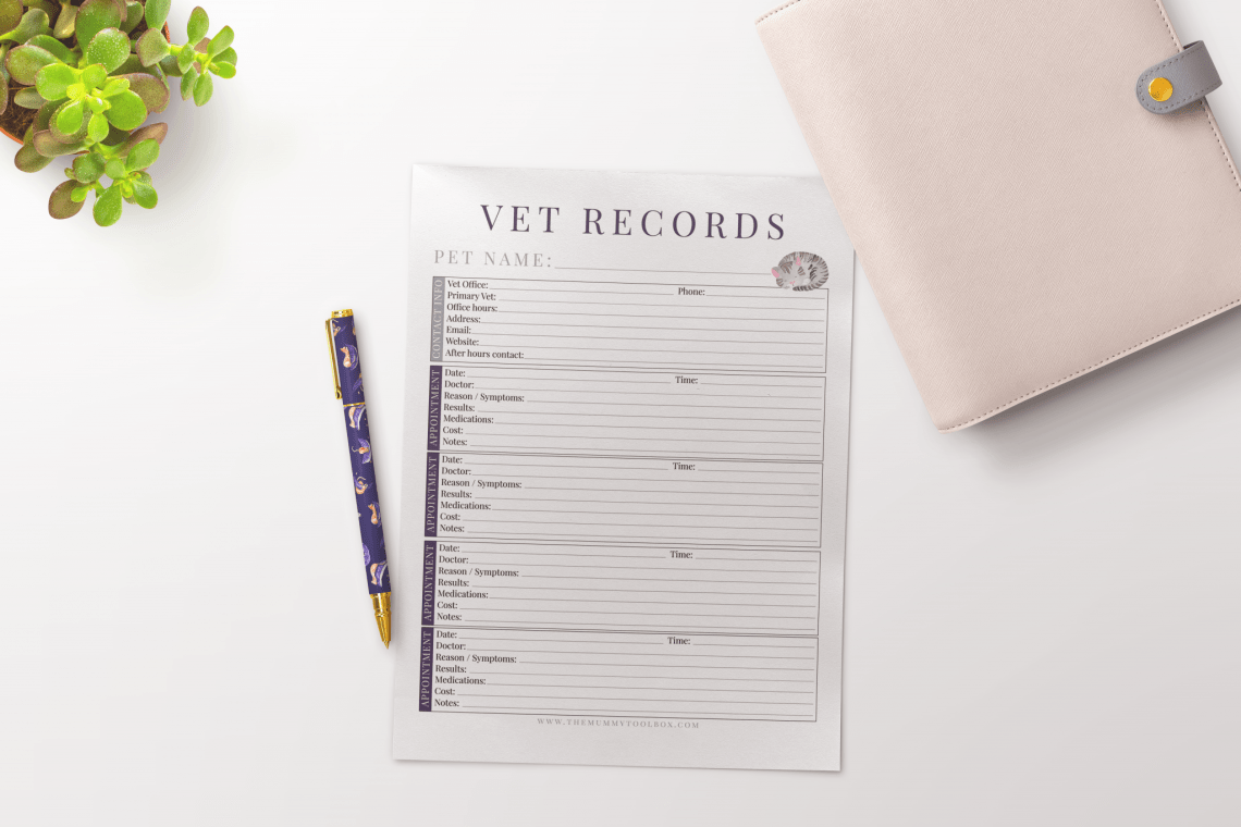 vet records appointment cards printable