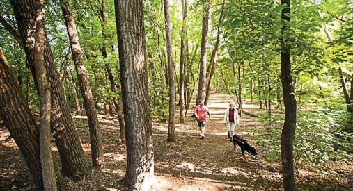 Another one of Edina's parks is Weber Woods; the city operates nearly 40 parks and recreational facilities. (Provided by city of Edina)