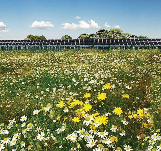 Photographed is a future solar garden on city property in St. Cloud. (Photo provided)