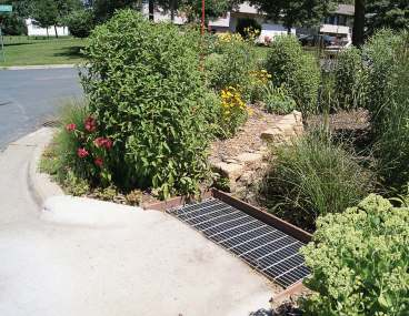 Coon Rapids has installed many rain gardens, which have come with several educational programs that teach citizens why it's important to capture and reuse rainwater and divert it from going down the roads. (Photo provided)