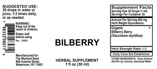 4008571 Bilberry Liquid Extract