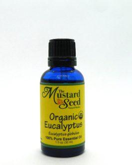 Organic Eucalyptus