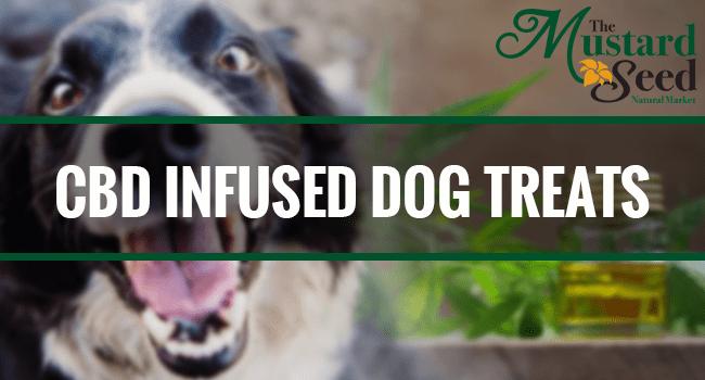 CBD Infused Dog Treats