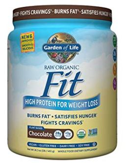 Garden of Life Raw Fit Protein Powder (Chocolate)