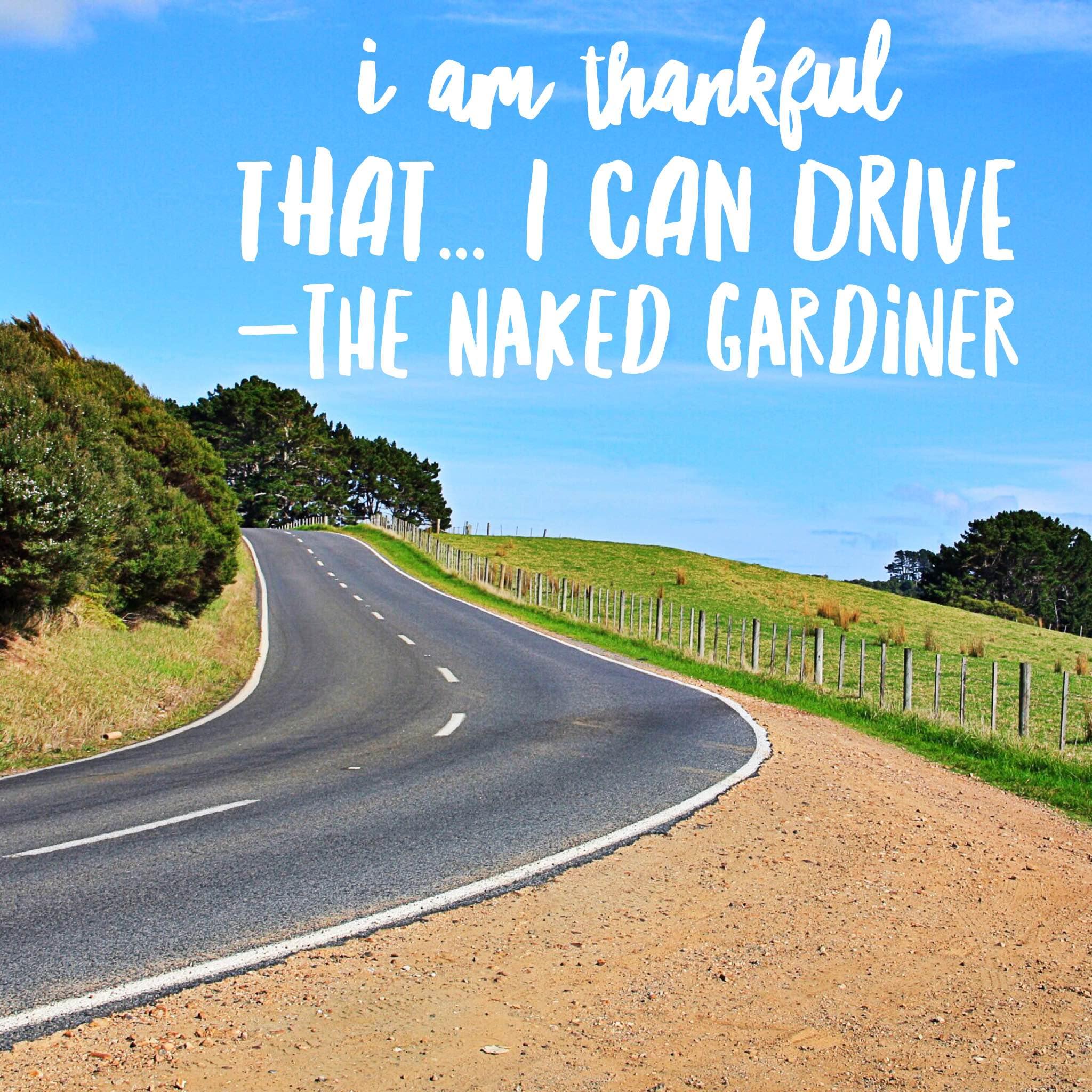 thankful-thursdays-i-can-drive-the-naked-gardiner