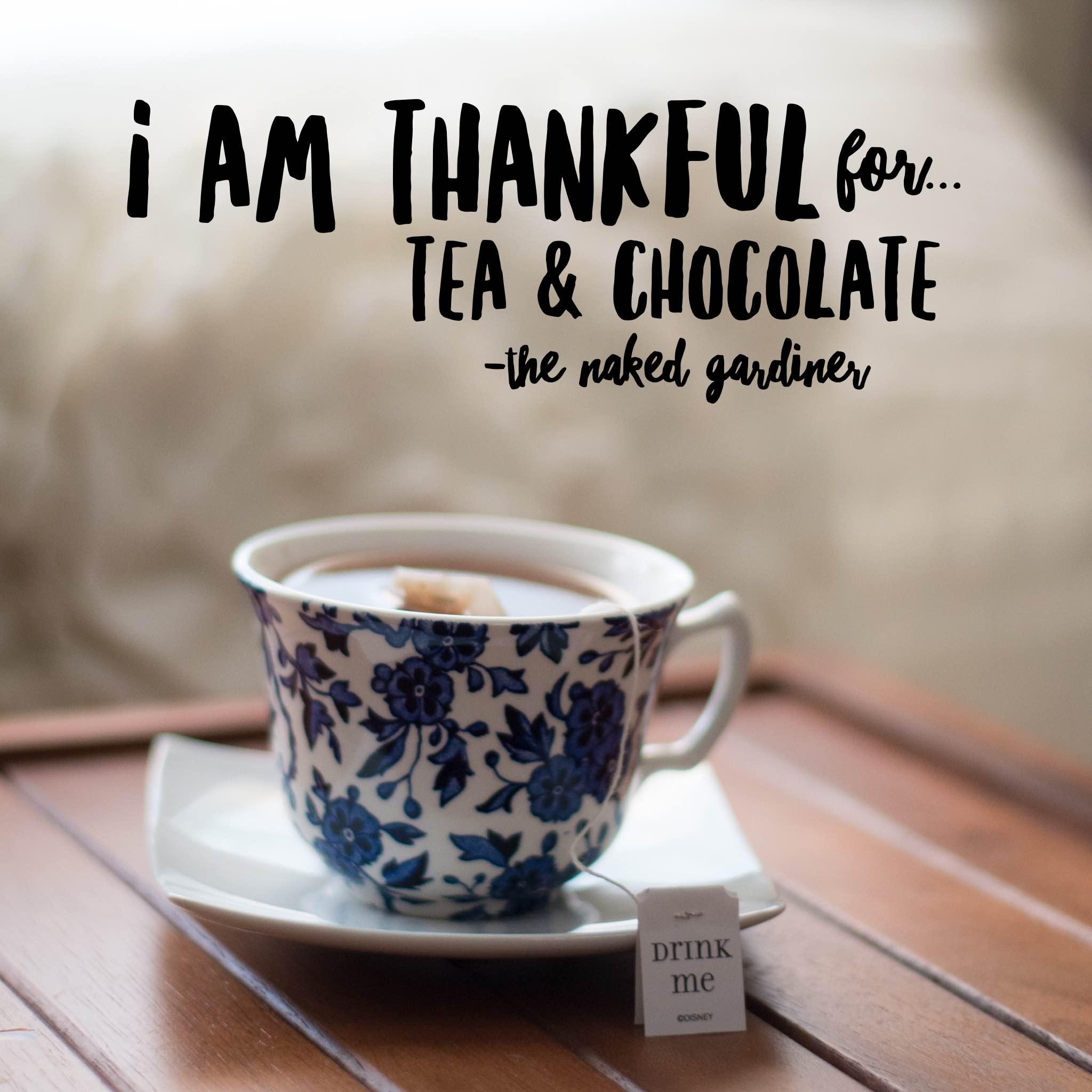 thankful-thursdays-tea-and-chocolate-the-naked-gardiner