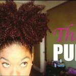 wpid-tempfileforshare.jpg  Natural Hair Video of the Week   The MEGA Puff wpid tempfileforshare 150x150