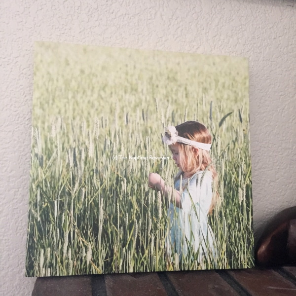 Cheap canvas prints from CanvasChamp.com