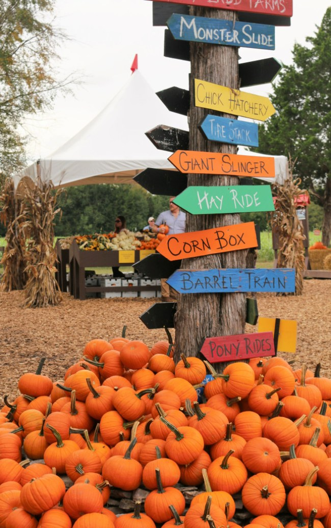 signs at the the farm