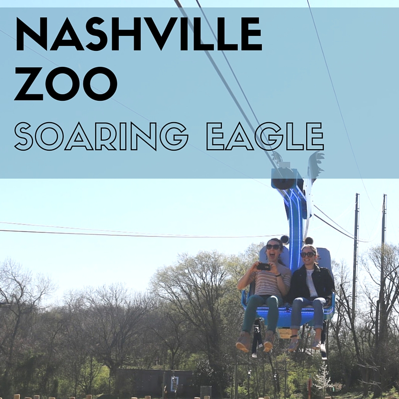 The Soaring Eagle: Nashville's Newest Attraction