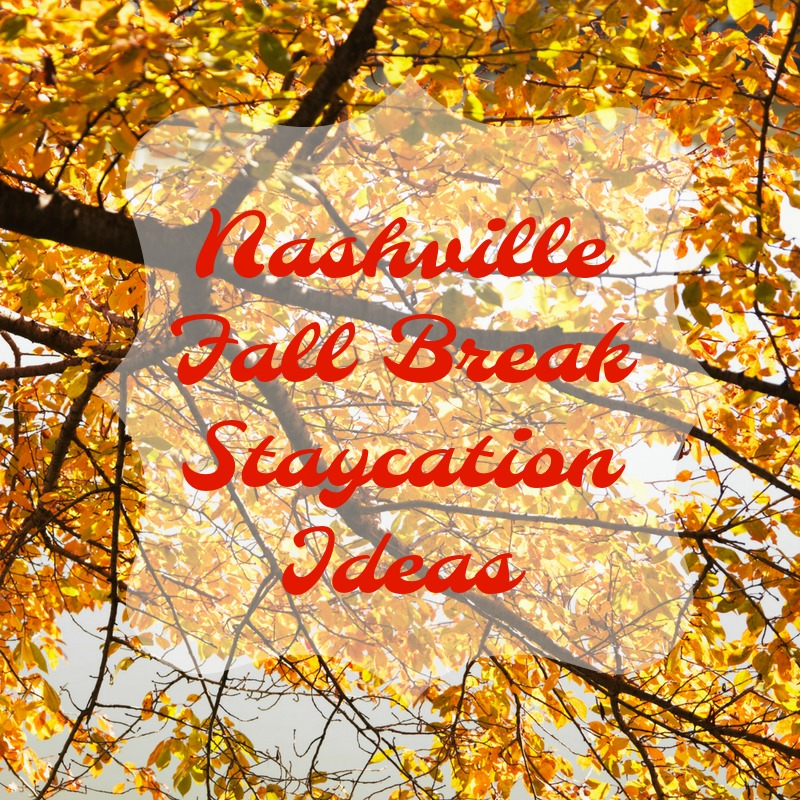 Fall Break Staycation Ideas