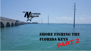 Shore Fishing Florida Keys Part 2