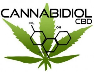 cbd-oil-merchant-services-300x230