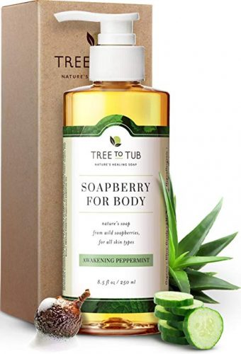 Tree to Tub Organic Peppermint Body Wash