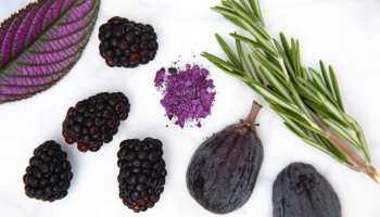 Natural Organic Makeup Brands