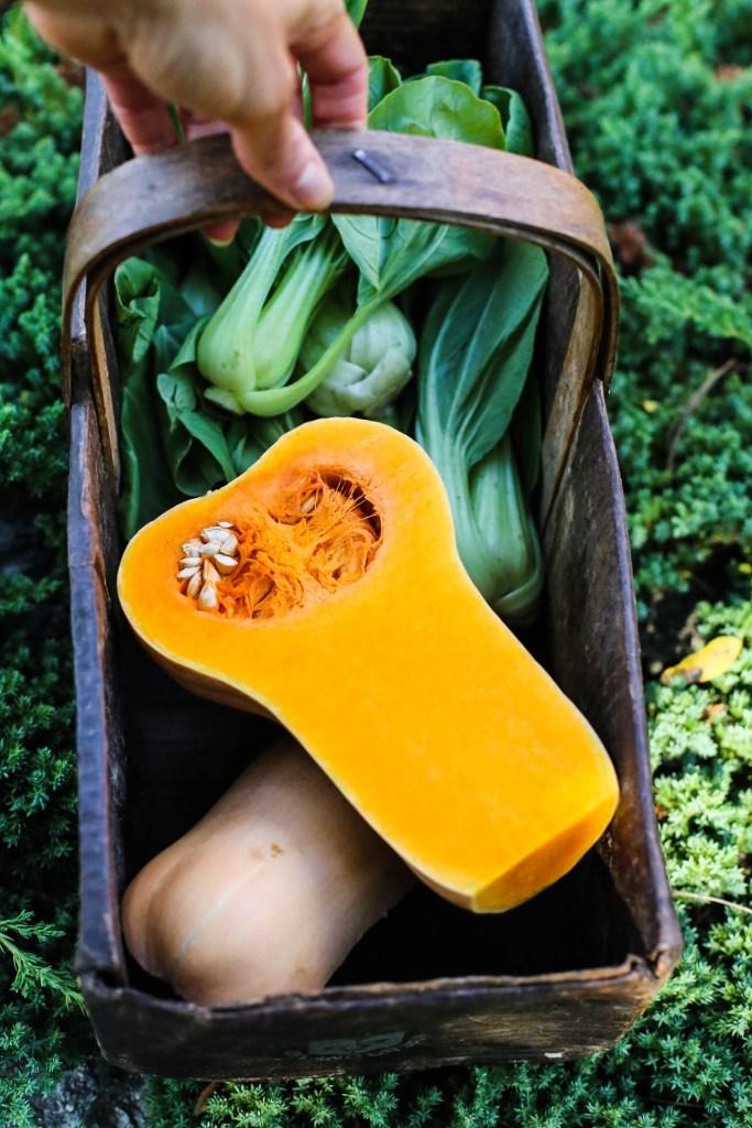 garden butternut squash and bok chop