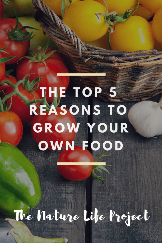 The Top 5 Reasons to Grow Your Own Food