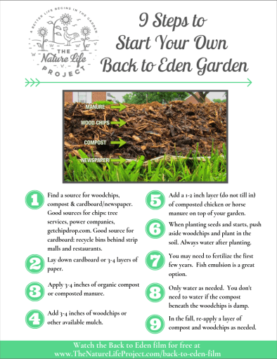 9 Steps to Start Your Own Back to Eden Garden