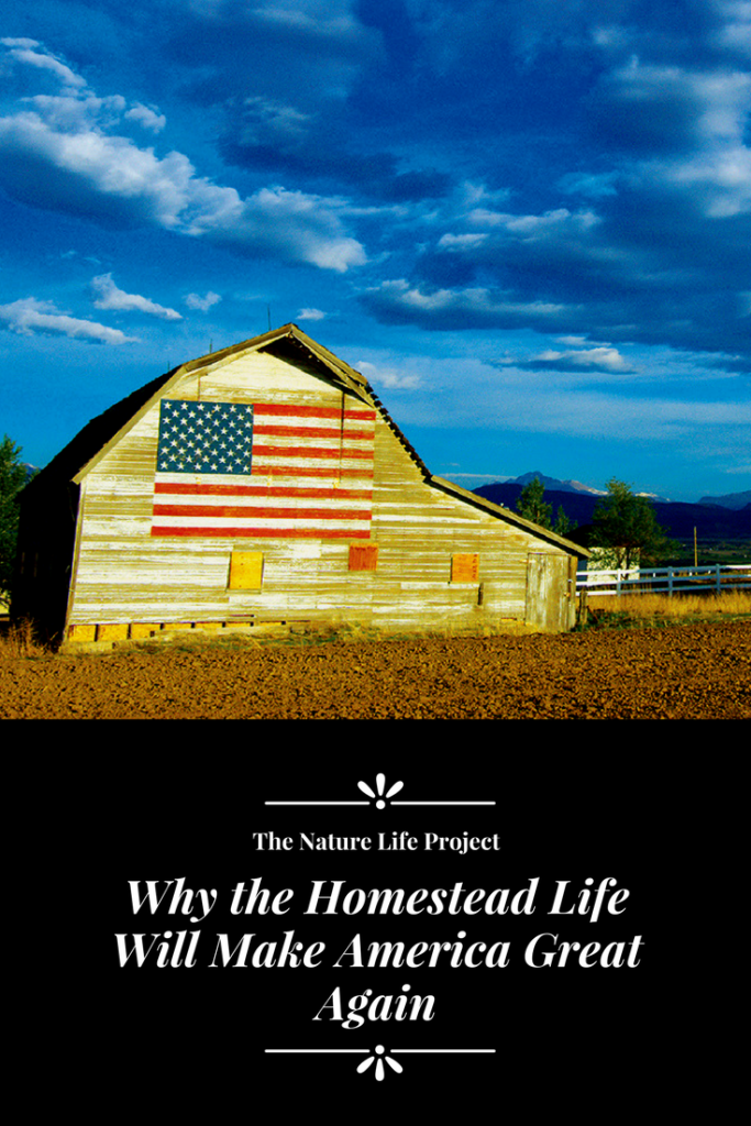 Why the homestead life will make America great again.