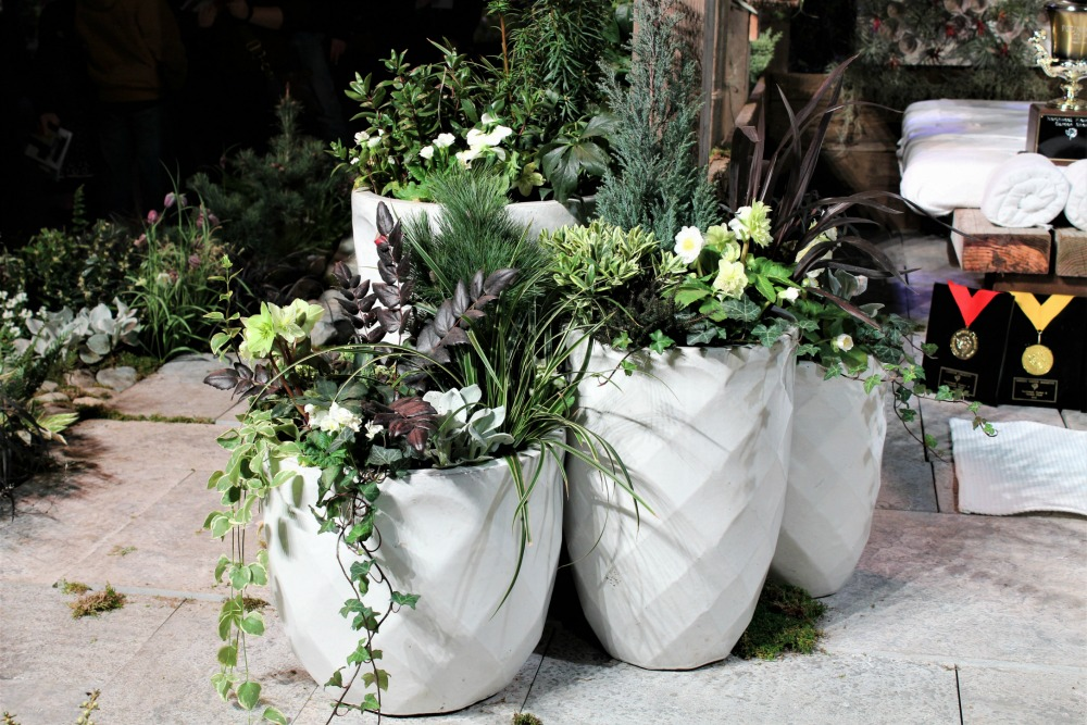 White themed container garden flowers