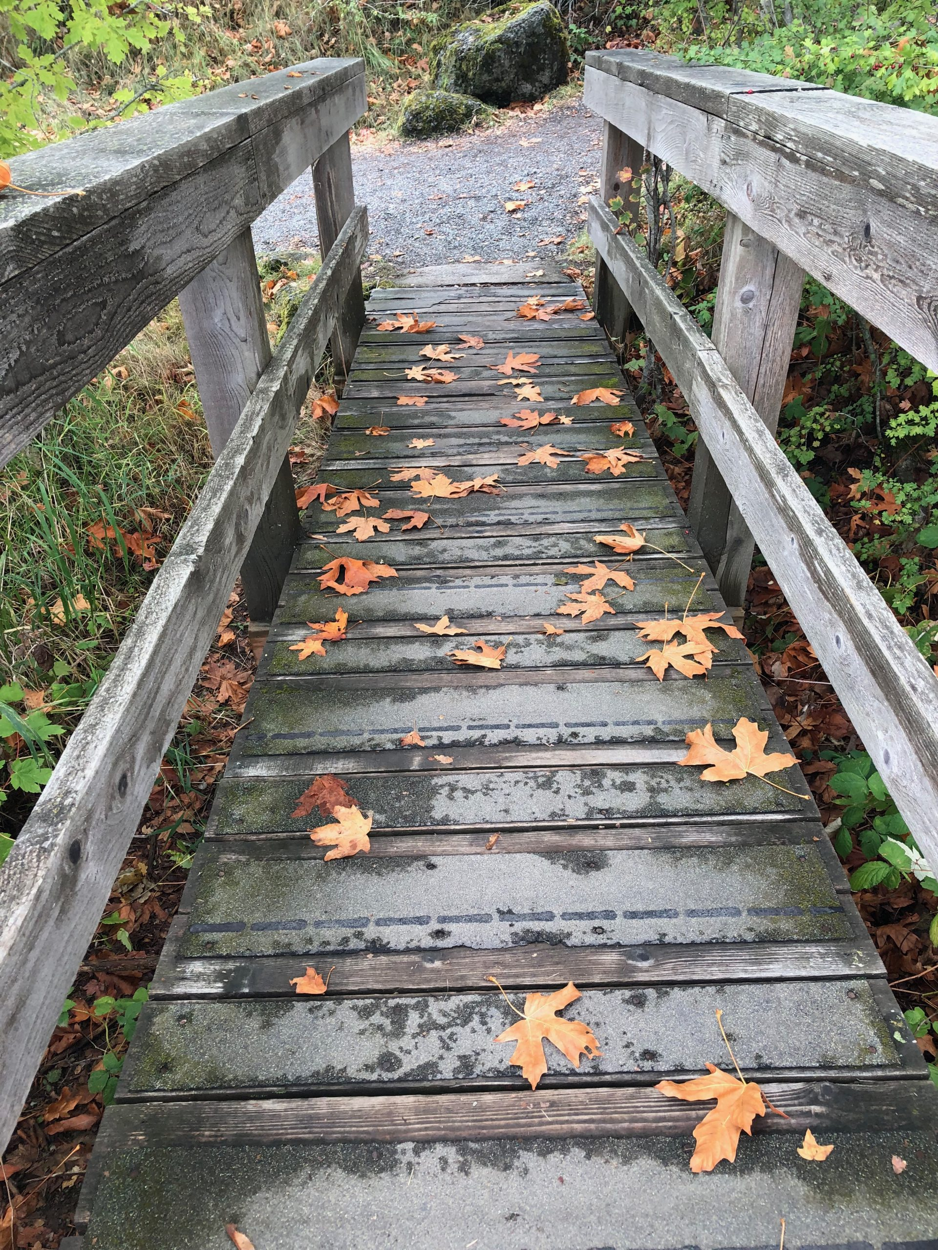 Image shows a wooden bridge in a frosted area. Serval orange fallen maple leafs have fallen on the bridge