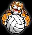 Lady Tiger Volleyball Tournament Game Tonight at Home