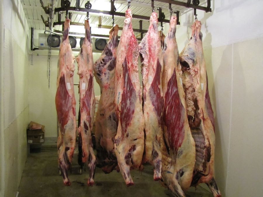 Custom Cut Butcher Shop Specials - March 20