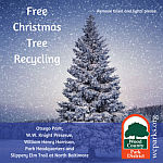 Reminder: Christmas Tree Recycling in NB