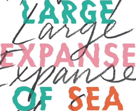 A Very Large Expanse of Sea Tahereh Mafi