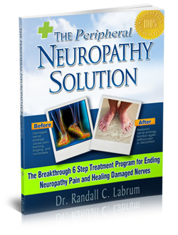 The Neuropathy Solution Program  Image of neropathy solution cover5 L