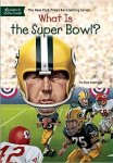 what-is-the-super-bowl