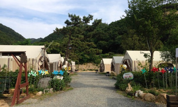 Glamping It Up in Gyeongju
