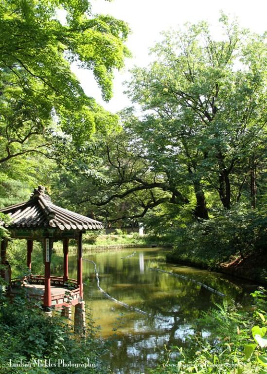 Changdeokgung Palace's Secret Garden, Seoul, South Kore