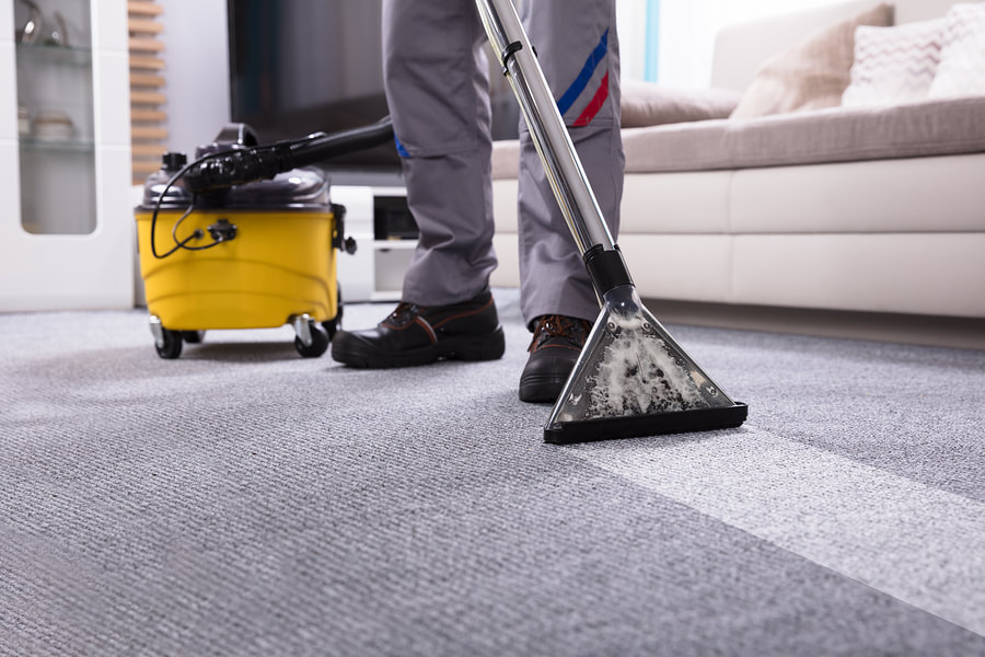 newscastle-cleaning-services-carpet-cleaning-1