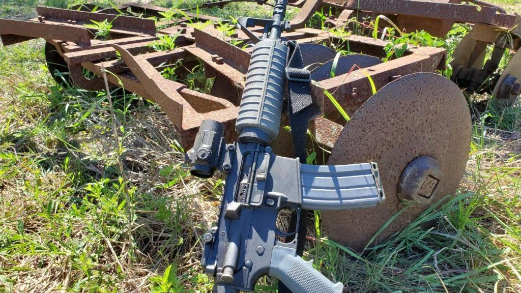 Primary Arms MD25 (2)