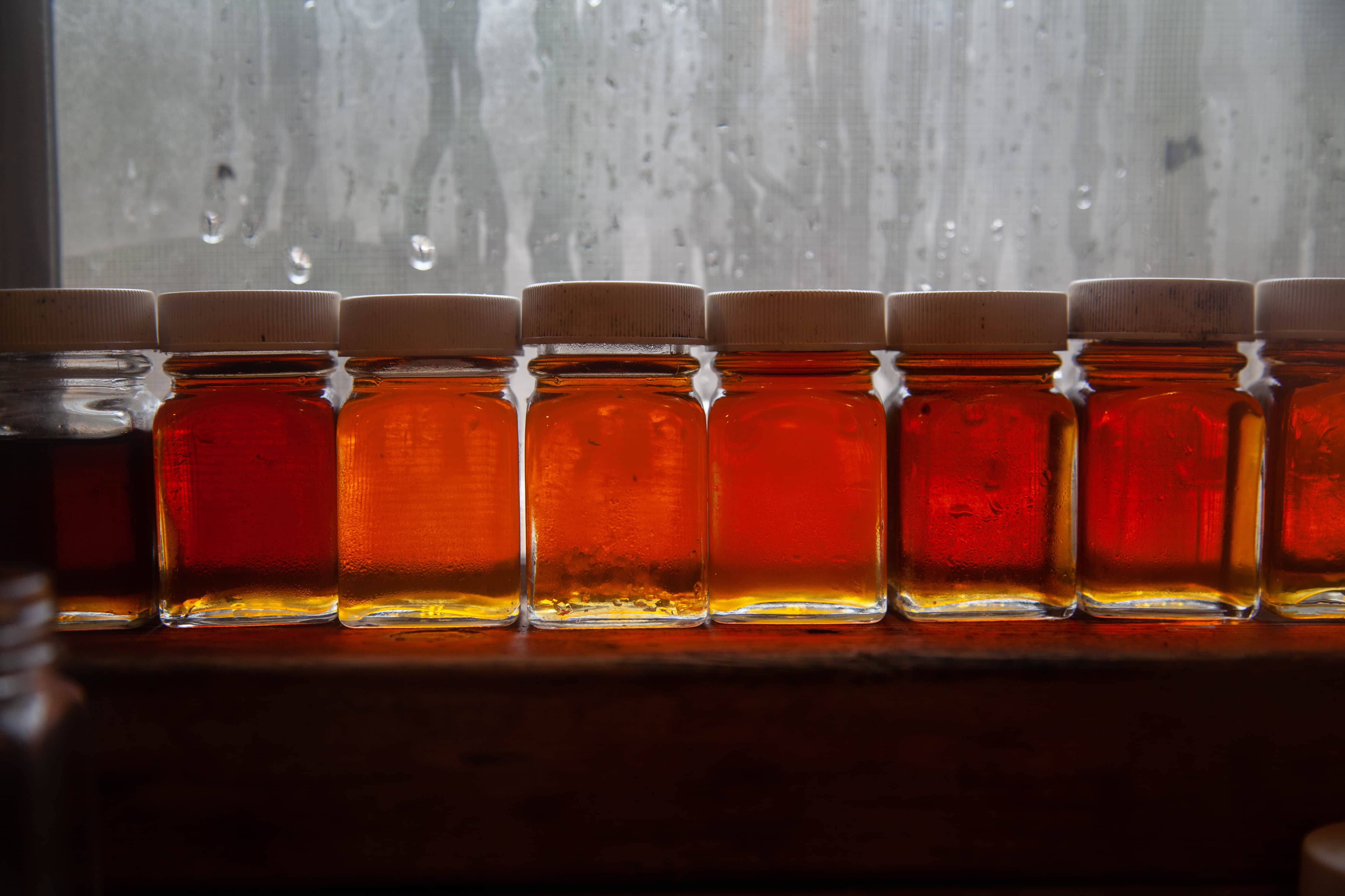 Syrup producers keep samples in clear glass jars that reveal the syrup's color.
