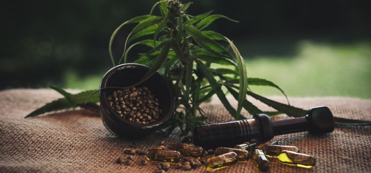 Ultimate Guide to CBD Product Types