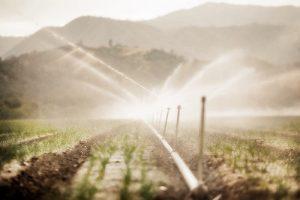 irrigation_5834735312_fd8b7ee04b