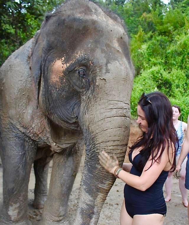 woman giving elephant mud bath